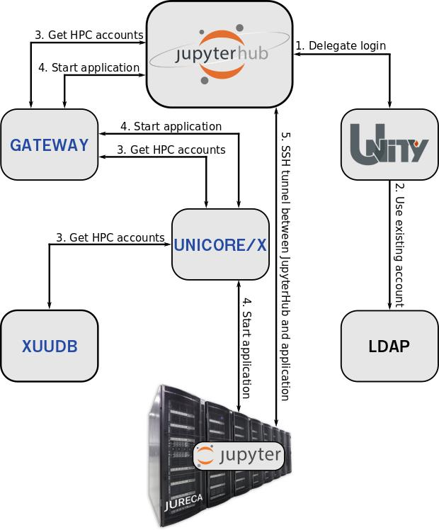 Web-access to HPC for Rhinodiagnost – Morphological and